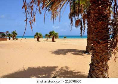 The beautiful beach of Santa Maria, Sal, Cape Verde