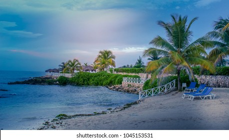 Beautiful beach shore with palm trees on the Caribbean sea. Taken in Lucea, Jamaica.