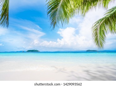 Beautiful beach. Summer holiday and vacation concept background ,tropical landscape.