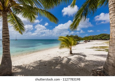 Beautiful beach surrounded by palm trees