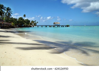 Beautiful beach at Tobago island in Caribbean
