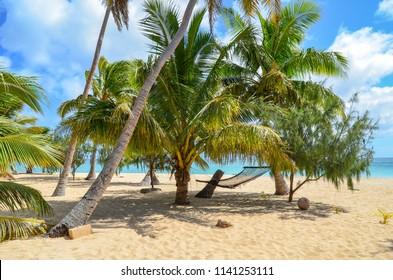 Beautiful Beach of Uoleva Island, Ha'apai group, Tonga