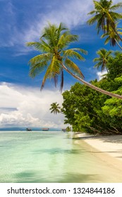 Beautiful beach. View of paradise tropical beach with coconut palms. Holiday and vacation concept. Tropical island, ocean and blue sky