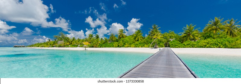 Beautiful beach with wooden jetty and green palm tree in Maldives island. Perfect tropical landscape, azure blue sea and calming mood. Exotic luxury resort and summer vacation, travel background