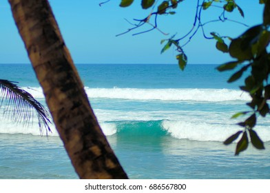 Beautiful Beaches of Puerto Rico in the Caribbean Sea