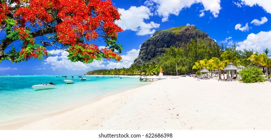 Beautiful beaches of sunny Mauritius island. Tropical vacations