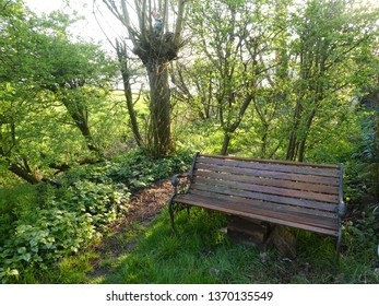 beautiful bench in a green garden in the Netherlands