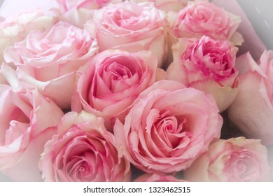 beautiful big bouquet of delicate pink roses