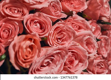 Beautiful big pink  Roses bouquet  of a bride on a wedding from top, floral background
