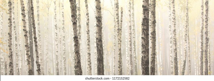 Beautiful birch trees with white birch bark in birch grove among other birches with white birch bark
