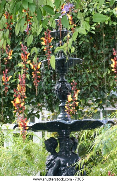 beautiful black fountain in luscious garden
