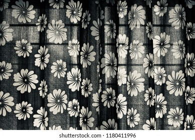 Beautiful black and white curtain clothes of an window isolated unique photo