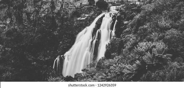 Beautiful Black and White of Waratah Falls inWaratah, Tasmania after heavy rain fall.