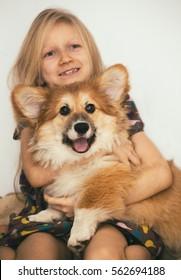 beautiful blond girl and corgi fluffy puppy