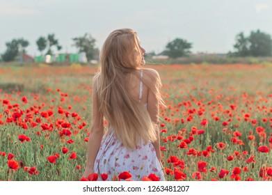 beautiful blonde girl in the poppy field
