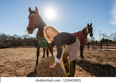 A beautiful blonde horse trainer tends to her horses on a farm