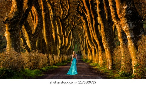 Beautiful blonde woman in turquoise long dress walks away in the middle of a tree lined forest road