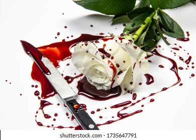 Beautiful and bloody white rose with knife on the white background. Bloody rose - conceptual photo.  White rose with knife and blood. Rose and knife.