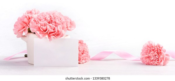 Beautiful blooming baby pink tender carnations in a white vase isolated on bright background, may mothers day greeting mum ideas concept photography, close up, copy space, mock up