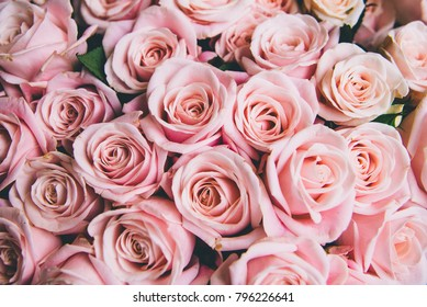 Beautiful blooming pink flowers background, vintage tone. Romantic love concept.
