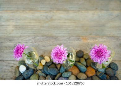 Beautiful blooming pink purple Dahlia flower decoration in champange clear glass vase on blurred wooden copy space background with grey gravel, selective focus, Thailand
