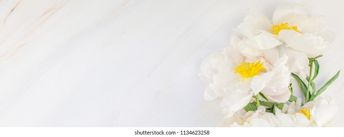 Beautiful blooming white peony flowers on marble background with copy space in minimal style, template for your design. Wedding invitation and celebration greeting concept. Long wide banner