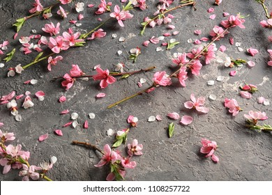 Beautiful blossoming branches and petals on grey textured background