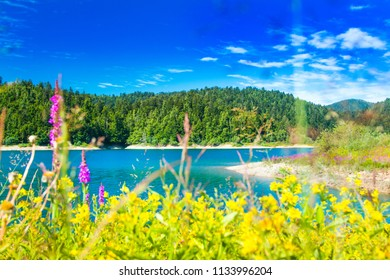 Beautiful blue bay on Lokvarsko lake in colorful landscape, Lokve, Gorski kotar, Croatia, blurred grass