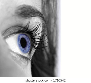 A beautiful blue eye is isolated on a white background.  Perfect to integrate into a graphic design.