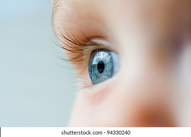 Beautiful blue eye macro shot