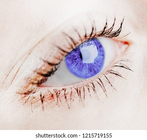 beautiful blue female eye, closer-up