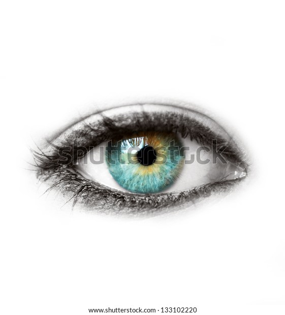 Beautiful blue human eye isolated on white macro shot