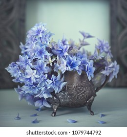 Beautiful blue hydrangea flowers close-up.