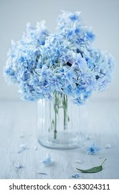 Beautiful blue hydrangea flowers close-up in a vase on a light background.