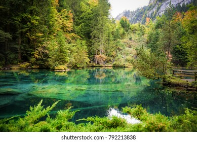 Beautiful blue lake and forrest in kanderstag, blausee place for fishing trout in Switzerland