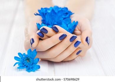 beautiful blue manicure with chrysanthemum flowers.