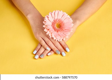 Beautiful blue manicure with rhinestones. Gentle female hands with pink gerbera. Beauty saloon. Bright summer design of manicure. Female relaxation and care.