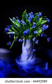 Beautiful blue natural fresh snowdrops still life