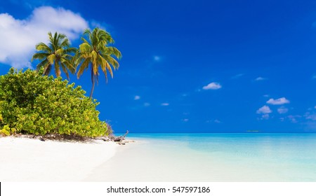 beautiful blue  sea tropical  Maldives  romantic  atoll island paradise luxury  resort about coral reef.