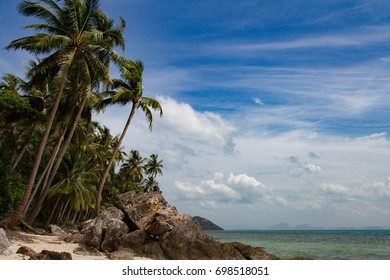 A beautiful blue sky with swaying palm tree, brown rock on the beach, paradise island
