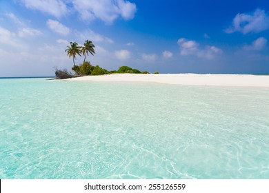 beautiful blue sun sea tropical nature background holiday luxury  resort island atoll about coral reef amazing  fresh  freedom snorkel adventure
