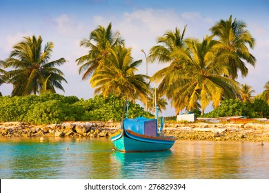 beautiful blue sun sea tropical nature background holiday luxury  resort island atoll about coral reef boat amazing  fresh  freedom snorkel adventure. Coconuts