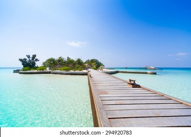 beautiful blue sun sea tropical nature background holiday luxury resort island atoll about coral reef amazing  fresh  freedom snorkel adventure day . Coconuts