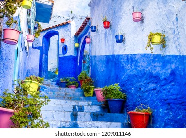 Beautiful blue walls with bright doors and colorful flower pots on the walls on a sunny day, Chefchaouen city medina in Morocco