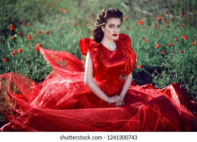 Beautiful blue-eyed young lady with perfect make up and hairstyle wearing luxurious silk red ball gown with ruffle sleeves sitting in the poppy field. Outdoor shot