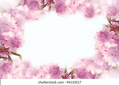 beautiful blur pink flowers made with color filters