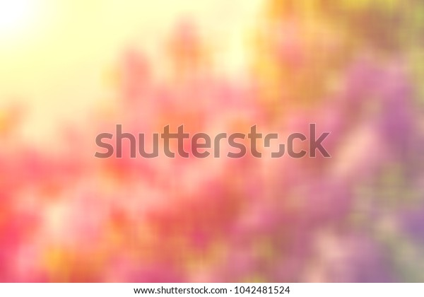 Beautiful blurred colored floral spring background