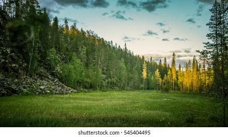 A beautiful bog landscape in Finland