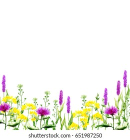 Beautiful border of meadow grass and flowers. Watercolor illustration. Ideal template for creating invitations and postcards.