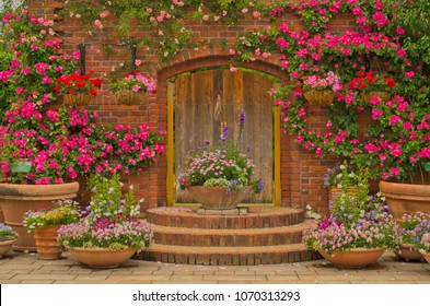 Beautiful botany garden decorated with wooden doors with pink angela climbing rose ,pretty tiny flowers in the wooden pot and the hanging pot of geranium flowers in Uminonakamichi Park, Fukuoka, Japan